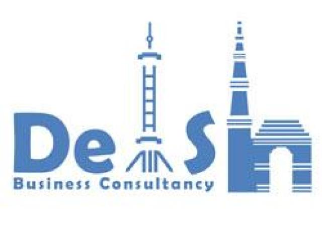 Chinese Translation Services in Delhi - Delsh Business Consultancy - 1/2